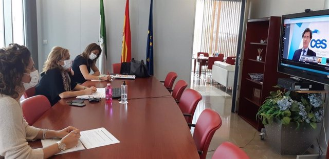 Reunión telemática entre las delegadas territoriales de Empleo y Turismo de la Junta en Sevilla y el presidente de la CES, Miguel Rus