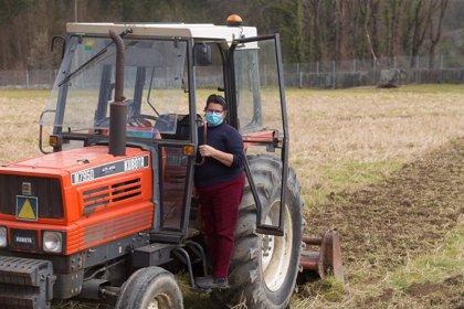 El DOE publica las ayudas para apoyar procesos de reestructuración del sector cooperativo agroalimentario en Extremadura