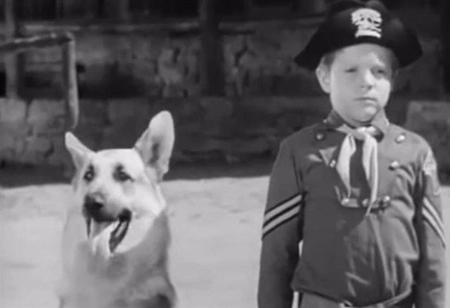 Muere Lee Aaker, actor de Rin Tin Tin, a los 77 años