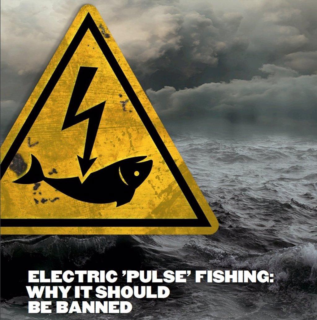 La Justicia europea avala la prohibición de la pesca eléctrica en la UE