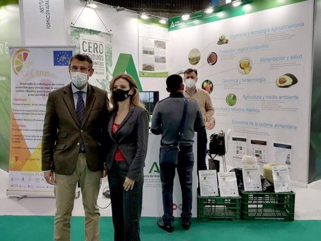 Ifapa presenta en Transfiere sus principales proyectos innovadores para el sector agrario