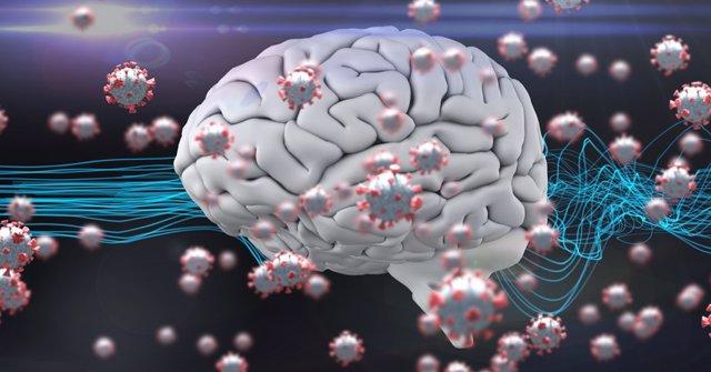 Archivo - Cerebro y coronavirus