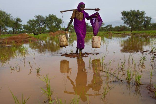 Archivo - Una mujer en un campamento de refugiados de Sudán del Sur en 2012