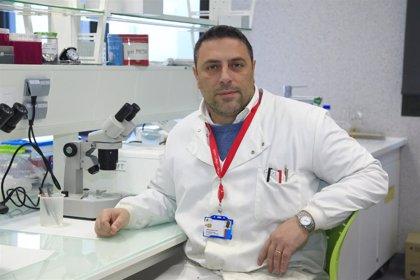 El profesor de la CEU UCH Salvatore Sauro, en el ranking de Standford de los investigadores más influyentes