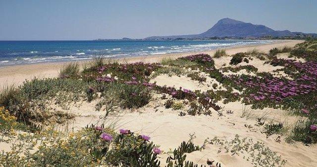 Archivo - Playa de Denia