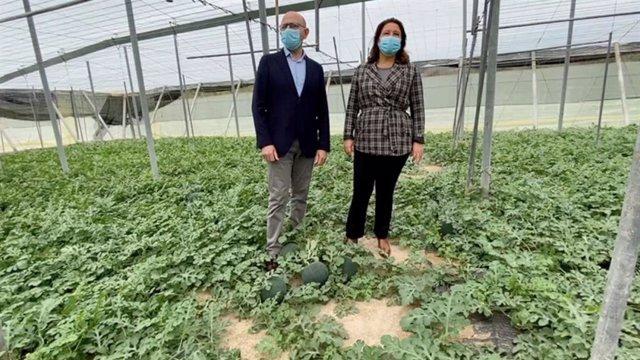 La consejera de Agricultura, Carmen Crespo, en una imagen de su visita a un invernadero en Almería.
