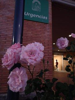 Archivo - Una mujer espera a ser atendida en el centro de salud de Mairena del Aljarafe.
