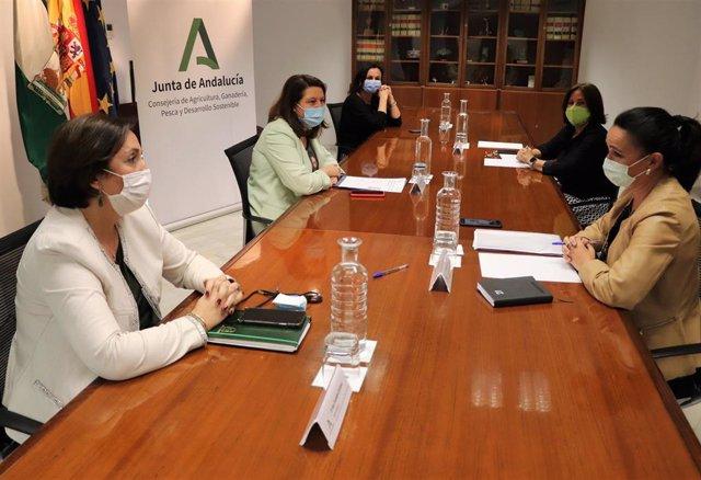 Junta y Asociación de Empresarias cooperarán para desarrollar proyectos innovadores a través del Ifapa
