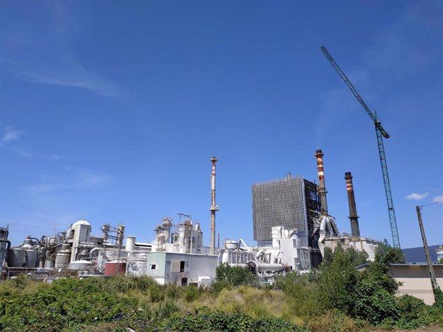 Archivo - Imagen de la fábrica de Ence Celulosa en Pontevedra.