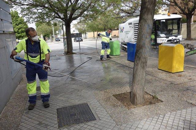 Granada emprende un plan de limpieza de semillas para evitar la expansión del polen que perjudica a los alérgicos