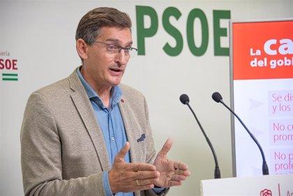 """Cvirus.-PSOE afea la propuesta de Moreno sobre los inmunizados: """"Hay días en los que él en sí es un experto"""""""