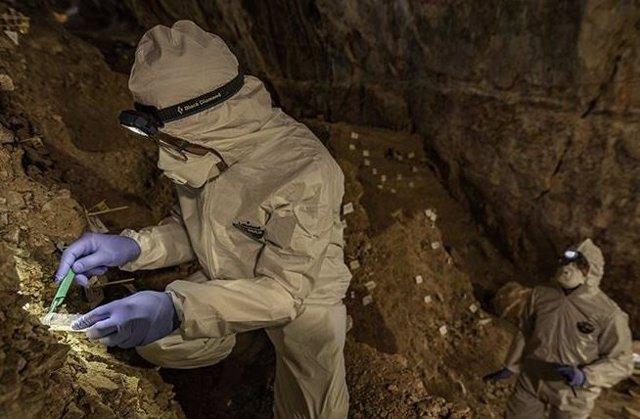 Recolección de ADN antiguo obtenido del suelo de una cueva en México