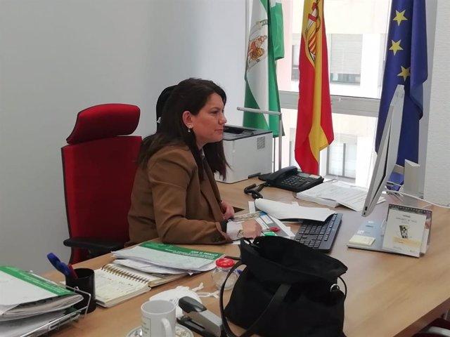 María Jesús Herencia, delegada territorial de Turismo de la Junta en Cádiz