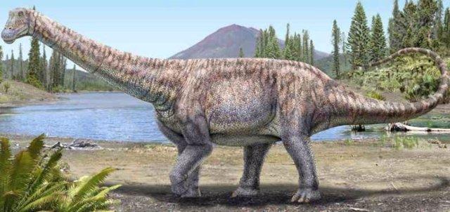 El Arackar licanantay corresponde a una especie del grupo de los titanosaurios, animales herbívoros, cuadrúpedos, de cabeza pequeña y de cuello y cola larga.