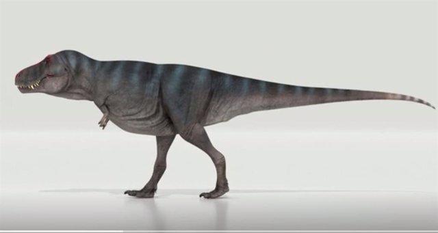 Una animación de T.Rex Trix caminando según las simulaciones de Van Bijlert et al 2021. La cola resuena, lo que permite una marcha más realista y un poco más lenta.