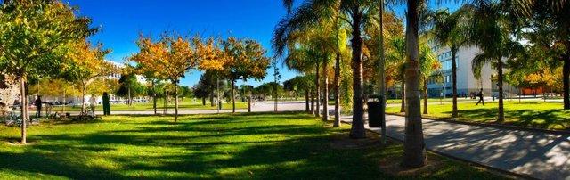 Campus de la Universitat Politècnica de València (UPV)