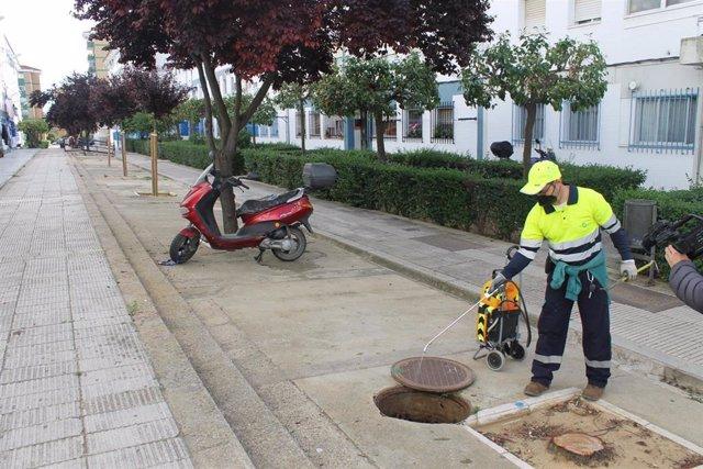 Un operario trabaja en la campaña de desinsectación preventiva en Huelva.