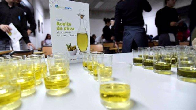 Archivo - Taller de cata de aceite de oliva