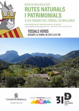 El Consell de Mallorca retoma las rutas culturales canceladas en diciembre por las restricciones sanitarias.