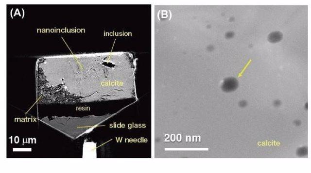 Inclñusiones en un grano de calcita en el meteorito Sutter's Mill reconocido por nanotomografía de rayos X. (B) Imagen TEM de una no inclusión llena de fluido portador de CO2 (indicada con una flecha)