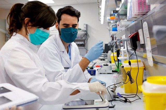 La doctora Esther Pomares en el laboratorio de IMO Grupo Miranza