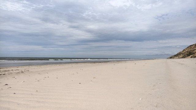 Primer plano de la playa tras las tareas de limpieza para retirar los restos de mancha de hidrocarburo.