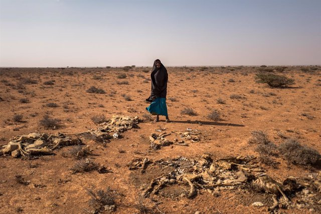 Archivo - Una mujer afectada por la sequía en Somalia
