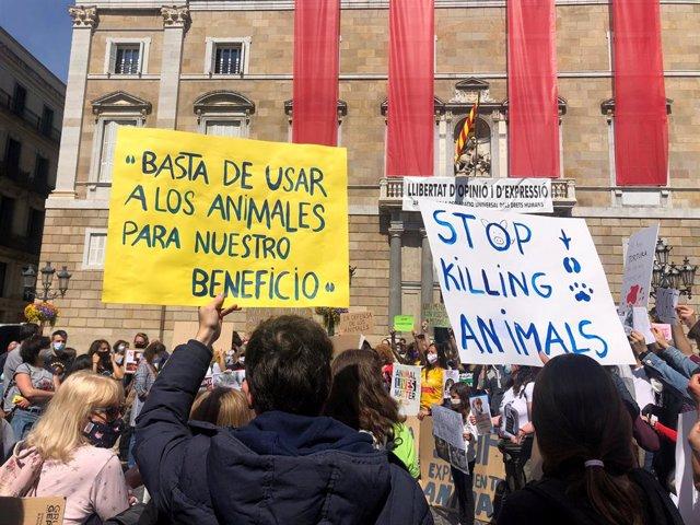 Unes 250 persones es concentren a Barcelona per l'alliberament dels animals tancats a Vivotecnia.