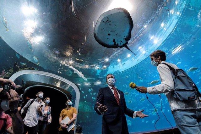 El gran acuario Poema del Mar reabre sus puertas al público