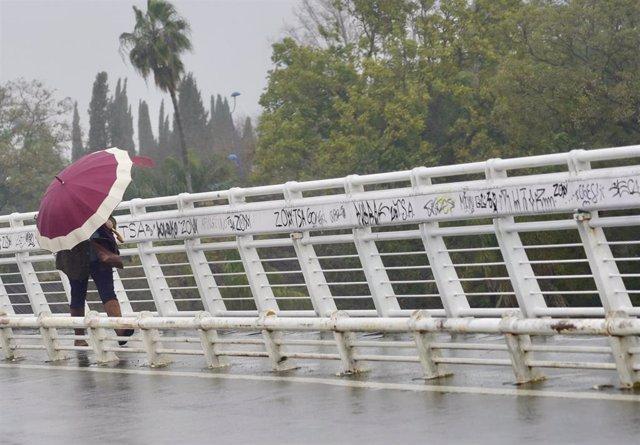Archivo - Un persona se protege de la lluvia y el viento caminando por la pasarela  peatonal de la Cartuja en un día lluvioso y con fuertes rachas de viento en la provincia. En Sevilla (Andalucía, España), a 09 de febrero de 2021.