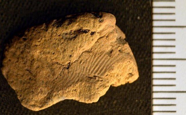 La huella digital del alfarero neolítico en un fragmento de cerámica recuperado en el Ness de Brodgar.