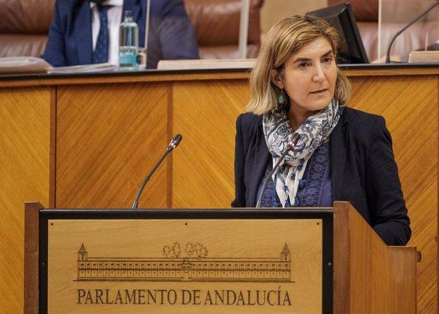 La consejera de Empleo, Rocío Blanco, este jueves en la tribuna del Pleno del Parlamento.