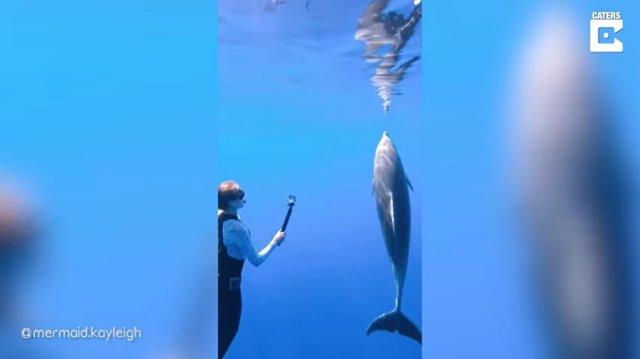 Kayleigh Grant, alias @mermaid.Kayleigh en redes sociales, promueven la conservación de la vida oceánica compartiendo parte de su trabajo