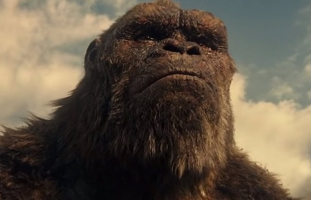 En marcha Son of Kong, la secuela de Godzilla vs. Kong
