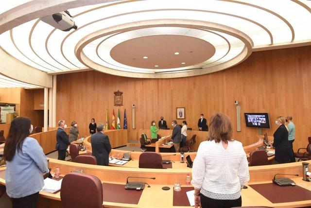 Archivo - Imagen de archivo de un pleno de la Diputación de Granada