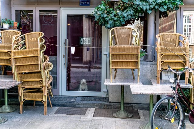 Archivo - dpatop - 14 March 2020, Belgium, Hasselt: A dog sits behind the door of a closed restaurant amid drastic restrictions on public life to slow down the spread of the coronavirus. Photo: Charlotte Gekiere/BELGA/dpa