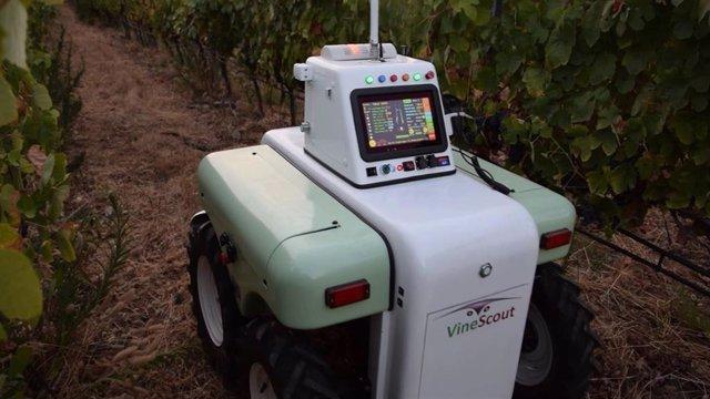 El robot Vinescout