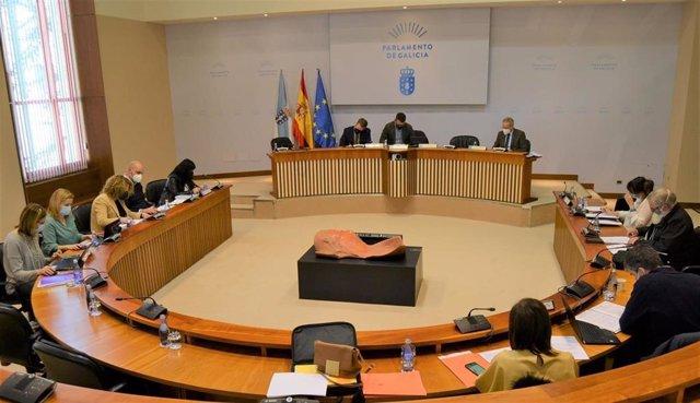 Archivo - Imagen de archivo de la Comisión de Agricultura del Parlamento gallego