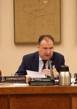 El exjefe de la UDEF, José Luis Olivera, en una comparecencia en el Congreso