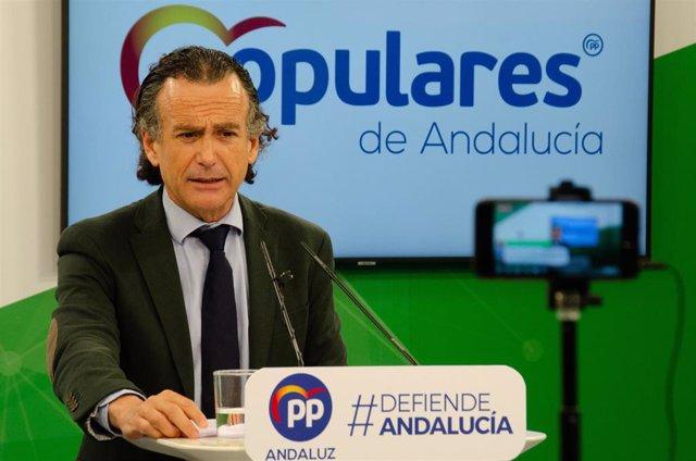 El vicesecretario de Sectores Productivos del PP-A, Pablo Venzal, en rueda de prensa.