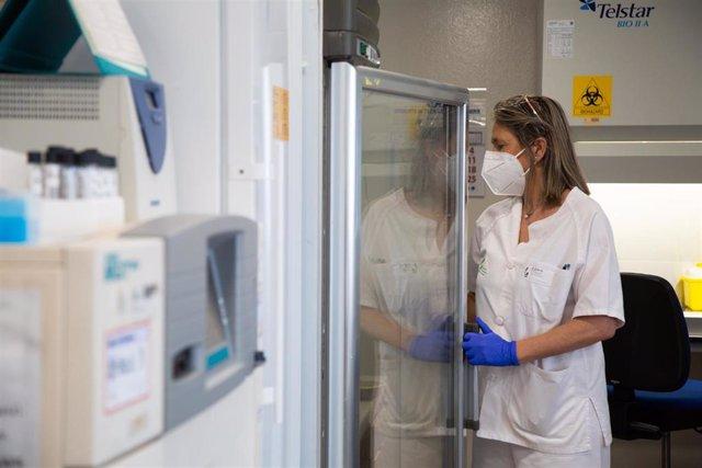 Una investigadora trabaja en  laboratorio de Microbiología