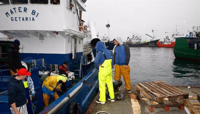 Varios pescadores trabajan en la campaña de pesca