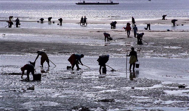Pesca Galicia