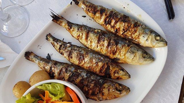 El consumo de sardina no sólo es asequible económicamente y fácil de encontrar, sino que es seguro y preventivo ante la diabetes tipo 2.