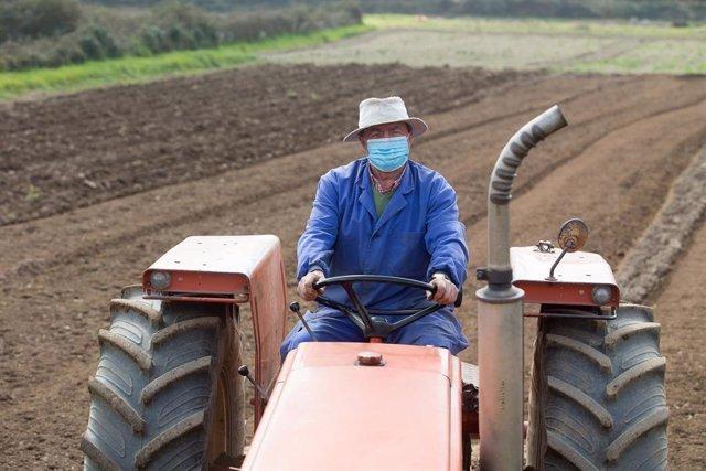 Archivo - Agricultor en sus tierras