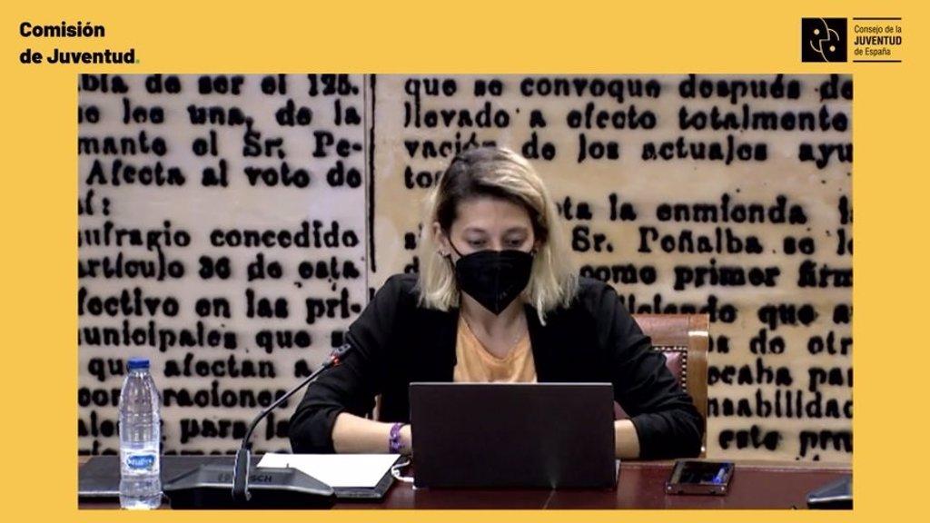 El Consejo de la Juventud critica en el Senado la exclusión de los jóvenes del Ingreso Mínimo Vital