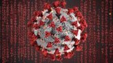 Foto: La Covid-19 puede tener un impacto a largo plazo en los vasos sanguíneos y el corazón en jóvenes sanos