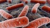 Foto: Un estudio revela que las infecciones múltiples son comunes en tuberculosis multirresistente