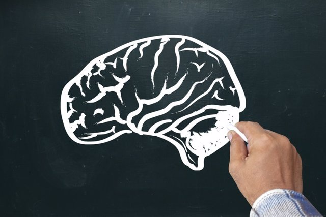 Archivo - Hand drawing brain sketch on blackboard. Brainstorming and idea concept
