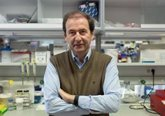 Foto: El catedrático de la USAL Alberto Orfao formará parte del comité de neoplasias mieloides de la OMS